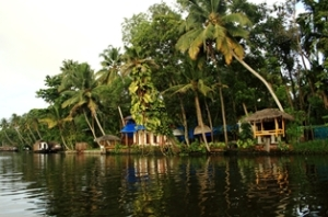 Allepey backwater